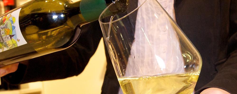 Expo, Padiglione Vino senza Lombardia  Il Valcalepio non ci sta: «Scelta assurda»