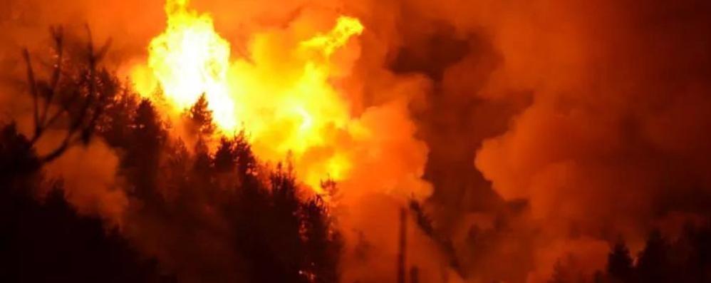 Incendi nei boschi, presi due giovani Fuochi d'artificio per innescare le fiamme