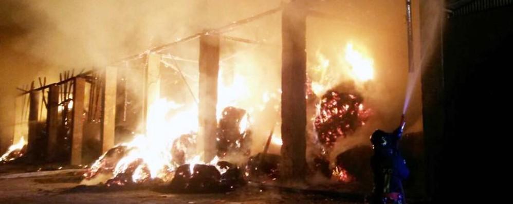 Rogo in cascina, fienile distrutto I proprietari: è un gesto doloso