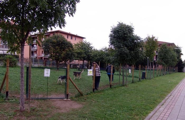 Un'area per cani a Terno d'Isola