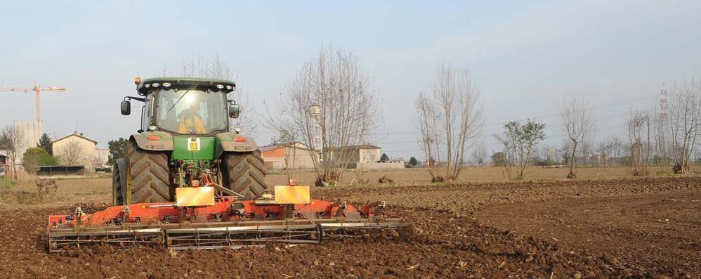 Superficie agricola: 1.500 ettari in meno «Ora serve il massimo livello di difesa»