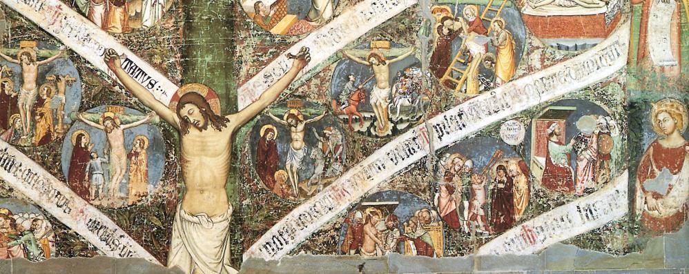 Il Grande Albero della Vita si svela  Si ammirerà in Santa Maria Maggiore