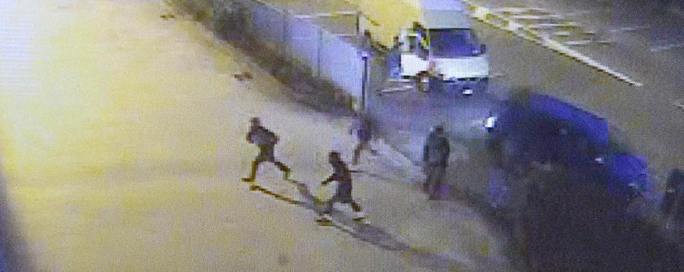 Dodici ladri in azione, furto in 4 minuti Frigo Gelo: via merce per 140 mila euro