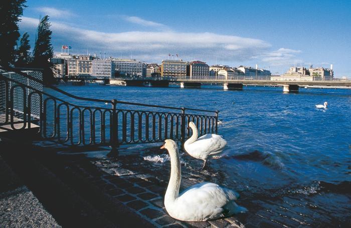 Ginevra. Nella foto d'apertura Zurigo