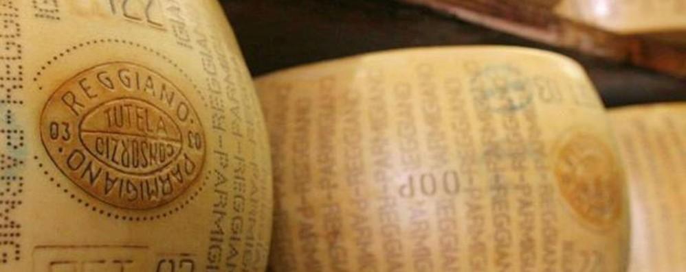 Parmigiano e Grana Padano tarocco Uno su due falso e made in Usa