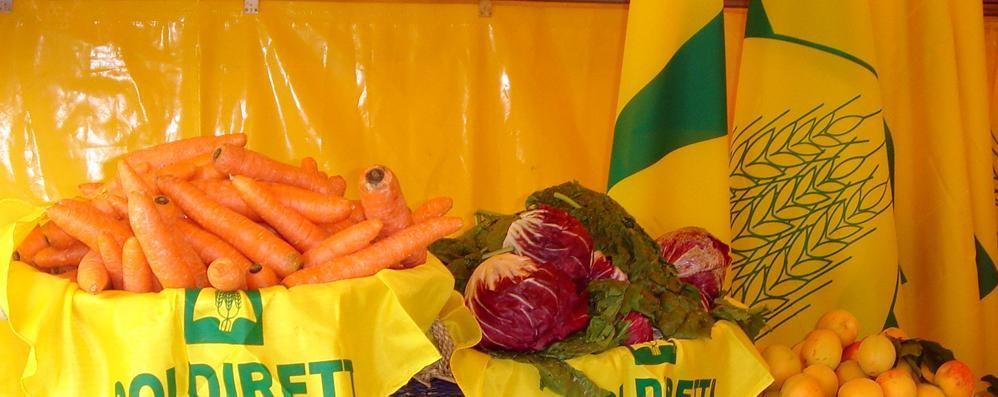 Meno pesticidi nell'organismo se si mangiano prodotti  «bio»