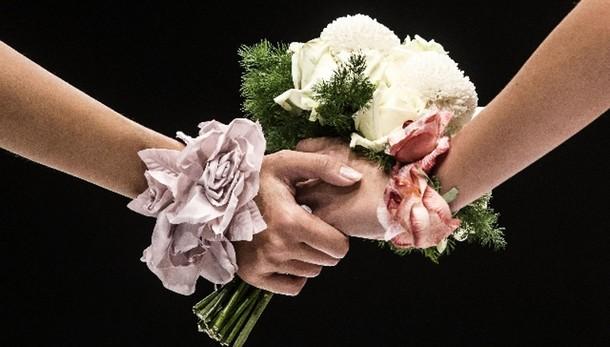 Solo tribunale può annullare nozze gay