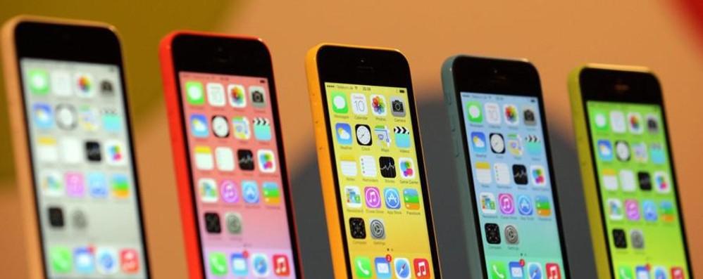 Apple, un iPhone 6C «economico»? L'indiscrezione: arriverà a settembre