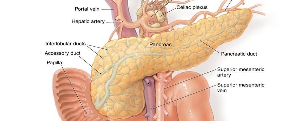 C'è un nuovo microinfusore Sempre più vicini a pancreas artificiale