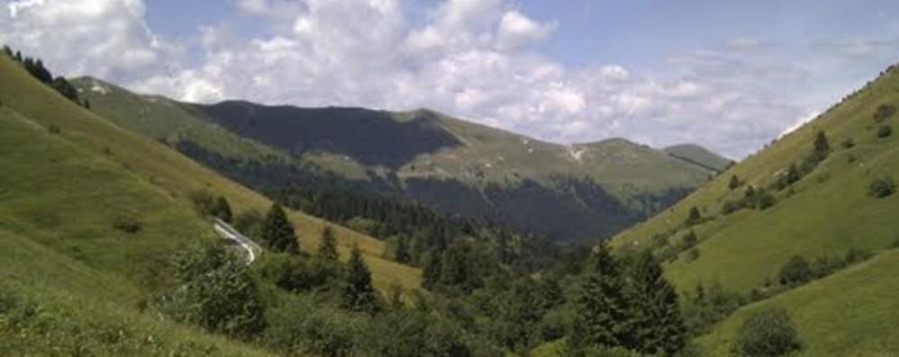 Famiglia bergamasca regala al Fai 150 ettari di boschi e pascoli sul Grappa