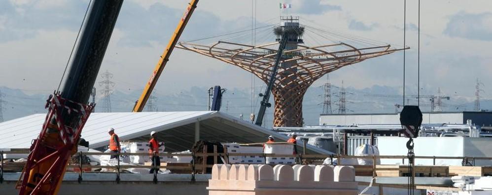 Cantiere Expo, Pisapia ottimista Qualche preoccupazione di Sorte