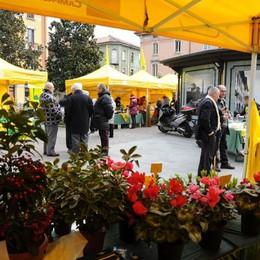 Campagna Amica, un nuovo mercato Da mercoledì sarà in Borgo Palazzo