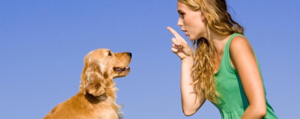 Il «cane-bambino» e le sue conseguenze