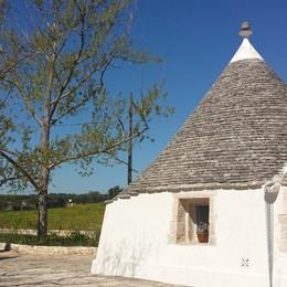 Dalla Murgia al Barsento Profumi e colori di Puglia