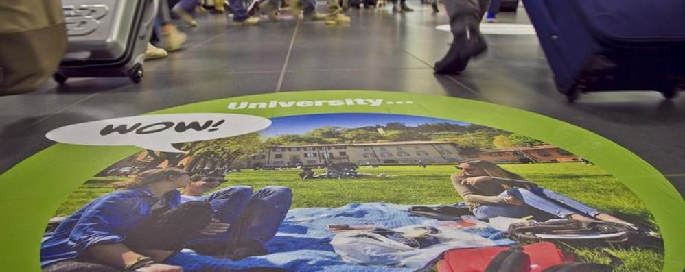 «Wow, vieni a visitare Bergamo La meraviglia a un passo dall'Expo»