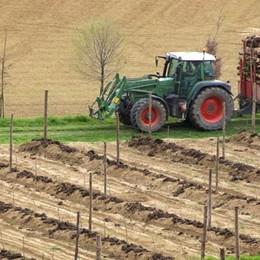 L'agricoltura batte l'industria 10 a 0