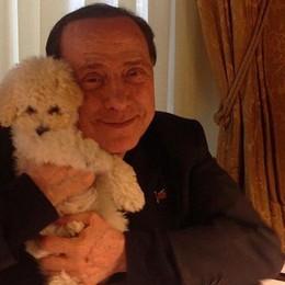 Berlusconi sbarca su Instagram e con Dudù stacca subito tutti