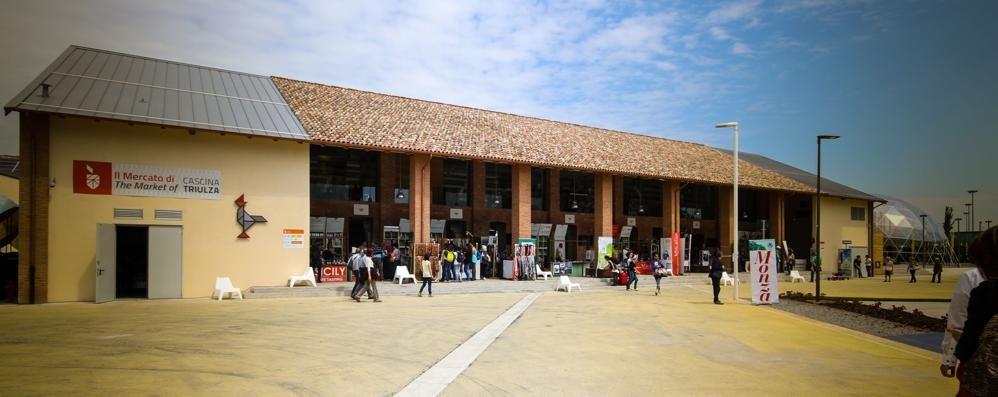 Cibo, energia e sviluppo sostenibile La Val Cavallina alla scoperta di Expo