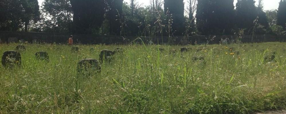 «Crespi, basta degrado al cimitero Non è un parco di divertimenti»