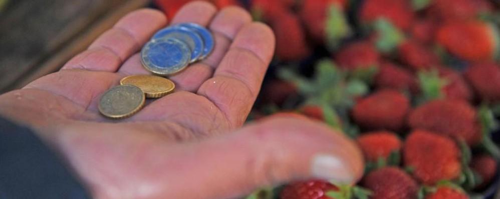 Famiglie, povertà in aumento Raddoppiate le richieste d'aiuto