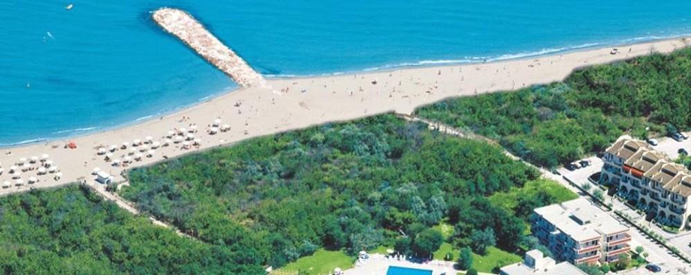 Isolaverde , in vacanza  con i delfini dell'Adriatico