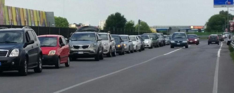 Auto in sosta selvaggia fuori dall'aeroporto - Foto