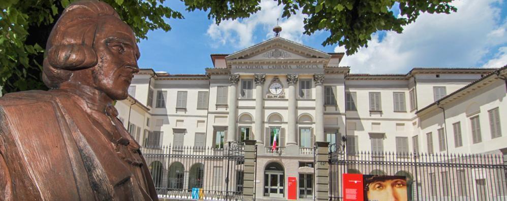 La riapertura dell'Accademia Carrara Ecco cataloghi, saggi e monografie