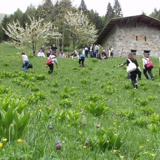 Valle Seriana e Val di Scalve in un inserto speciale con L ...
