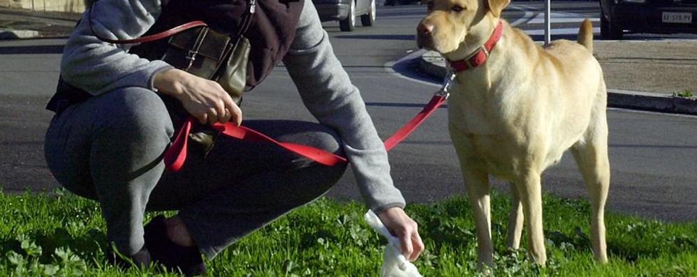 «Non riusciremo a far accettare i cani se quando lui sporca noi non puliamo»