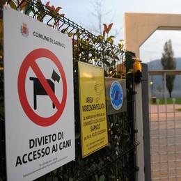 Sarnico, parchi vietati ai cani L'Enpa non ci sta: ricorso al Tar
