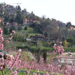 Bergamo firma la Carta, Astino accoglie i ministri Expo
