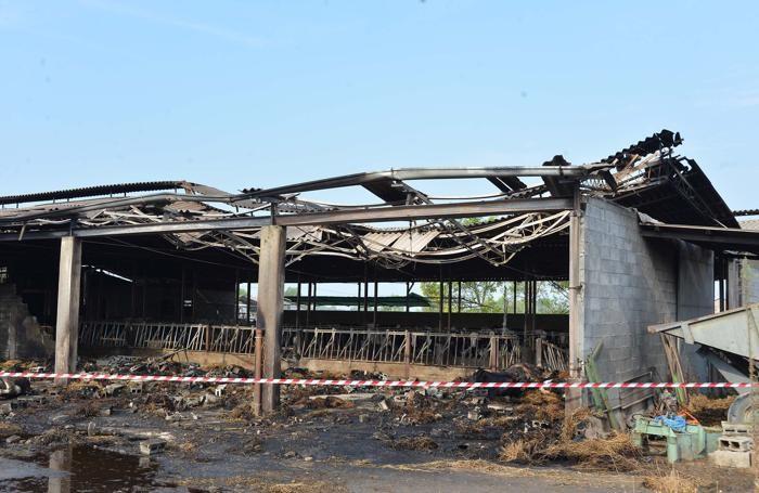 Il capannone-stalla bruciato a Fara Olivana