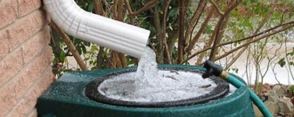 Caccia ai rimedi contro la siccità E tu come raccogli l'acqua piovana?