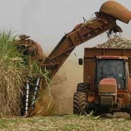 Agricoltura, la Lombardia guarda all'Iran «Presto le nostre imprese in missione»