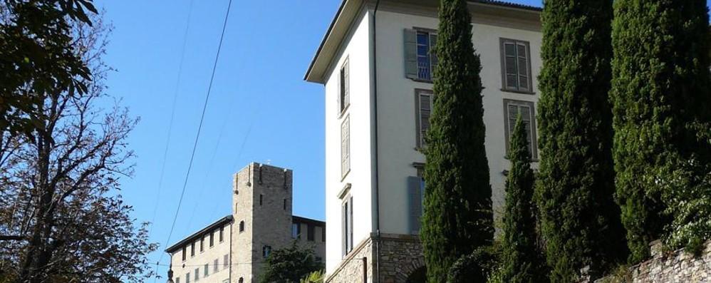 Censimento degli alberi a Bergamo Invia anche la tua segnalazione