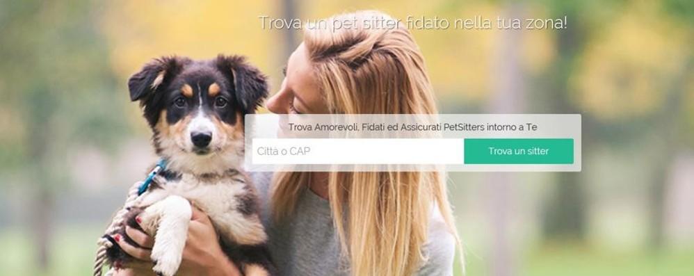 Il dog sitter è a portata di app Un sito per gli amici a quattro zampe