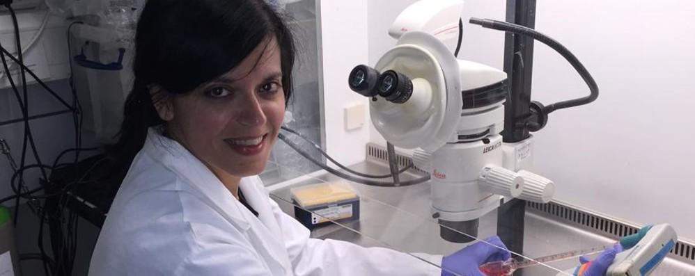 Ricercatrice a Cambridge Contro il cancro al cervello