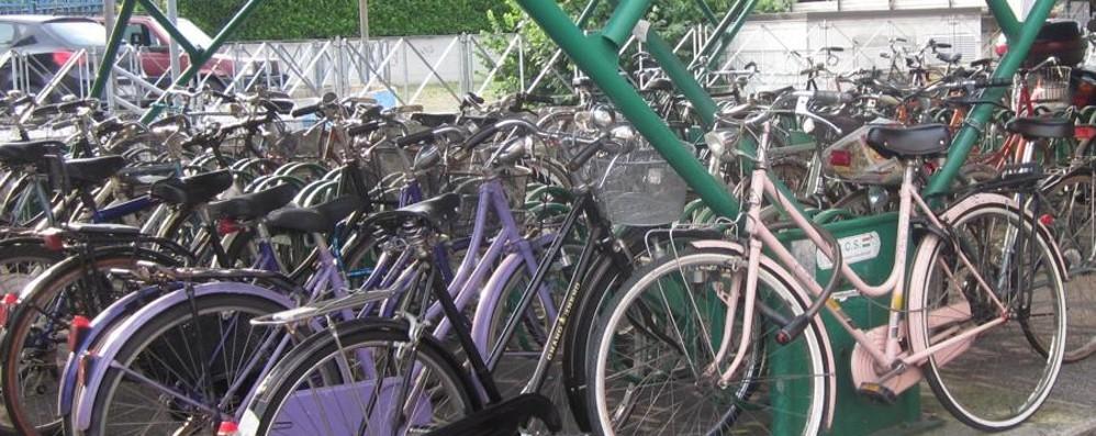 Rubano la bici davanti al bimbo Una lettrice: che pena questa società