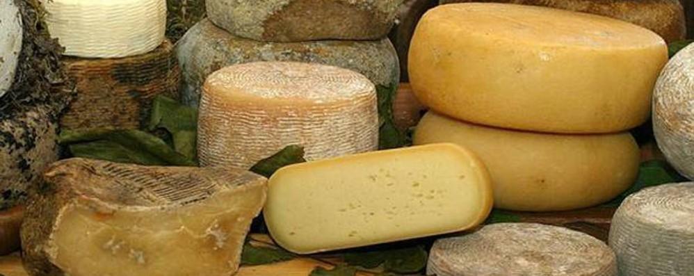 Via libera dell'Ue alle polveri? A Bergamo 24 formaggi a rischio