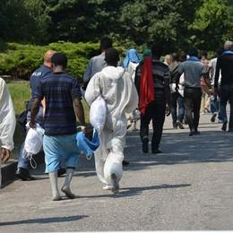 Profughi nelle scuole, Lega all'attacco «Requisite dalla Prefettura? Non è vero»