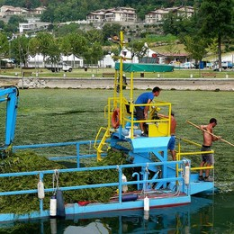 Alghe nel Sebino, chieste analisi da Roma 300 quintali raccolti e smaltiti in un giorno