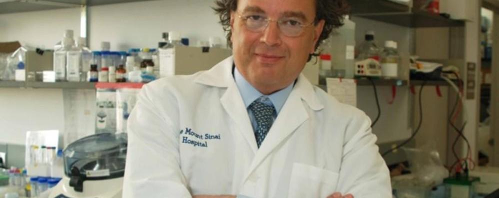 Da New York scoperta bergamasca Sull'Alzheimer gli studi di Pasinetti