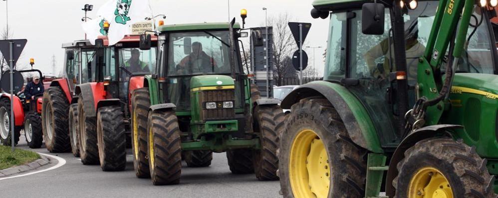 Latte: «Ci rubano 100 milioni di euro» I trattori torneranno a presidiare ai caselli