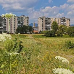 Parco Ovest, tesoro  verde 13 ettari in cerca di soluzioni