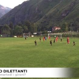 Serie D, martedì gironi e calendari?
