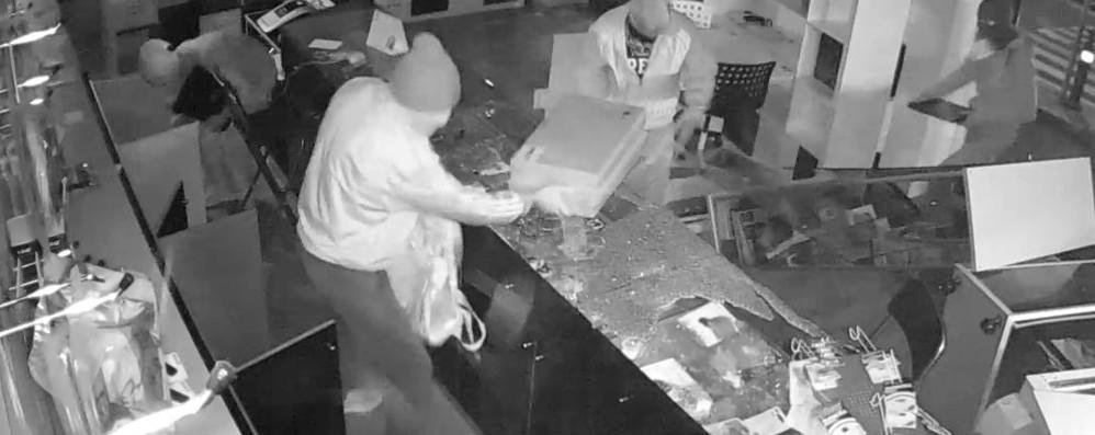 Il furto al Mc Point di Bergamo - video «Aiutateci e vi diamo un lavoro»