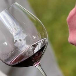 Clima favorevole, in alto i calici «Il vino del 2015 si prevede ottimo»