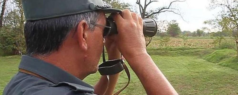 Caccia illegale a cinghiali e uccelli Un 60enne di Villongo finisce nei guai