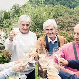 Festival del Franciacorta al via  Percorsi e degustazioni in 68 cantine