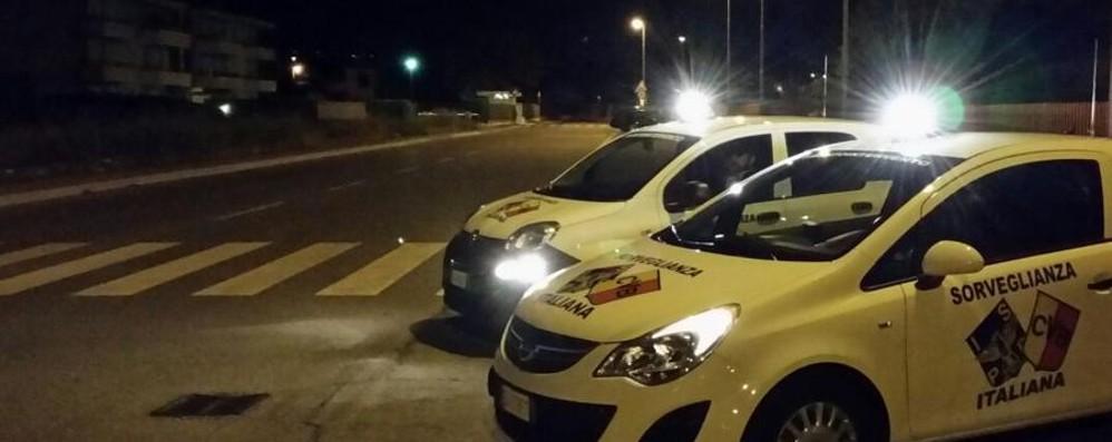 Assalto alla cassaforte, ladri scoperti Sparo in aria:   si buttano nel traffico